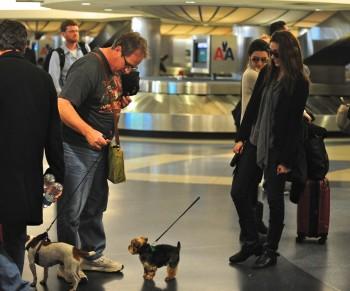 Эмми Россам, фото 3322. Emmy Rossum Looks Great with Her Dog LAX 2/17/12, foto 3322