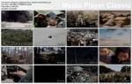 Wietnam: zaginione filmy / Vietnam: Lost Films (2011) PL.TVRip.XviD / Lektor PL