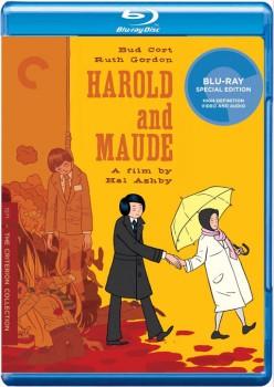 Harold and Maude 1971 m720p BluRay x264-BiRD