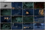 Nocne podchody / Night Stalkers (2011) PL.TVRip.XviD / Lektor PL