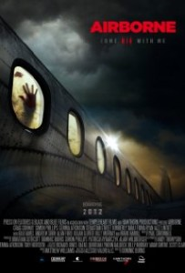 Download Airborne (2012) DVDRip 300MB Ganool
